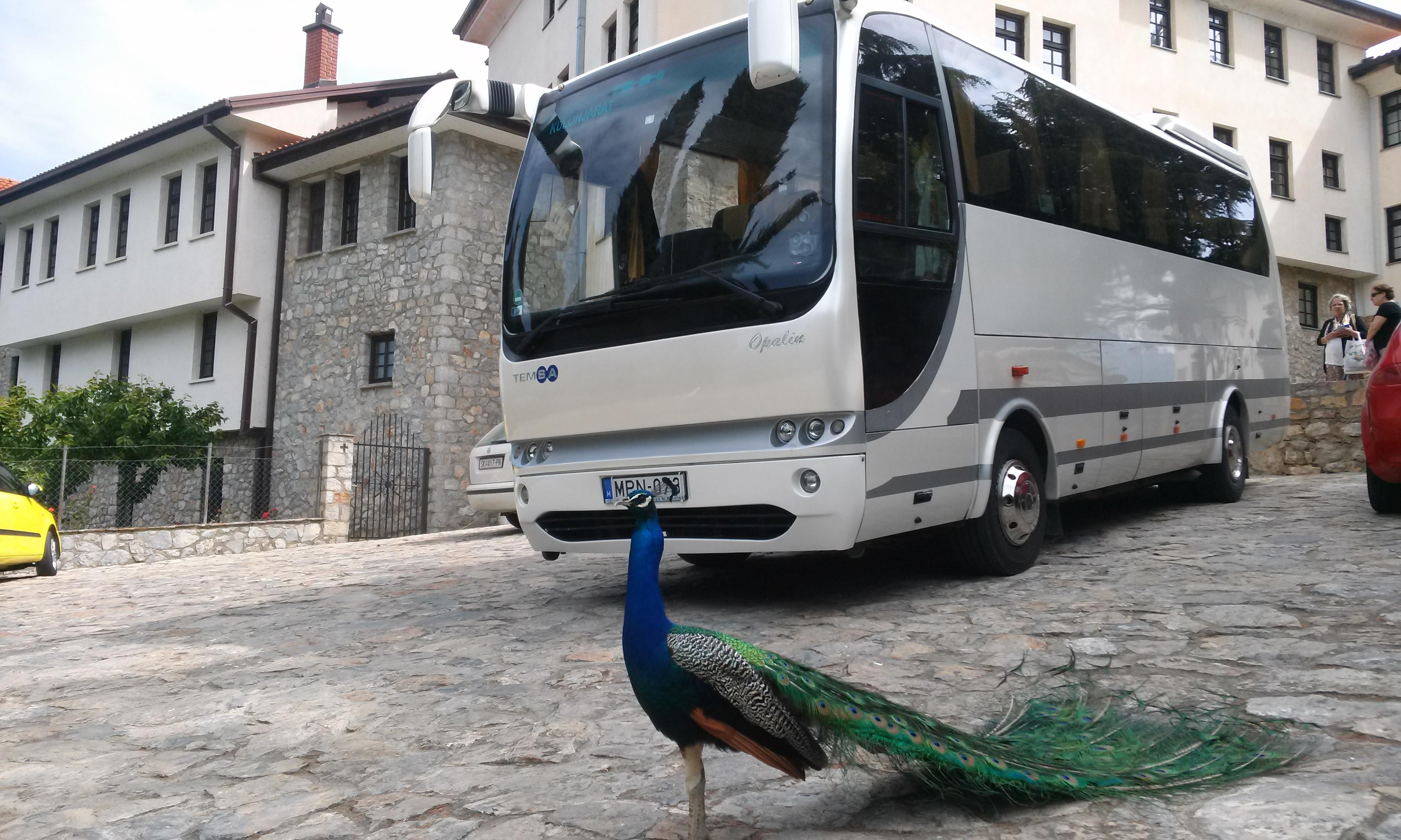 Buszok 35 főig